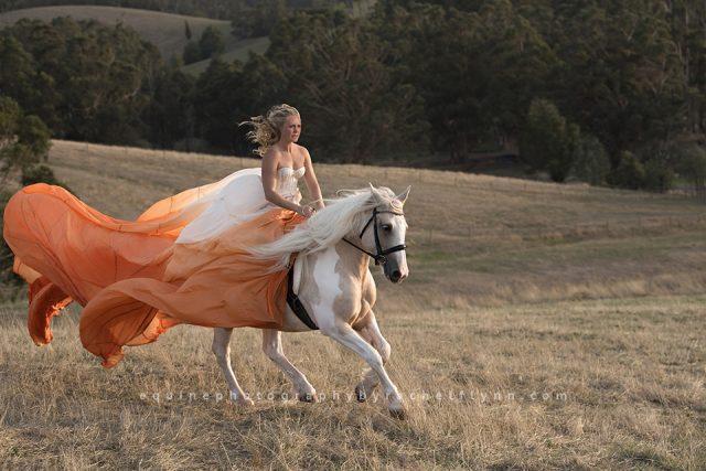 Equine-Photography-By-Rachel-Flynn-Web-0448.jpg