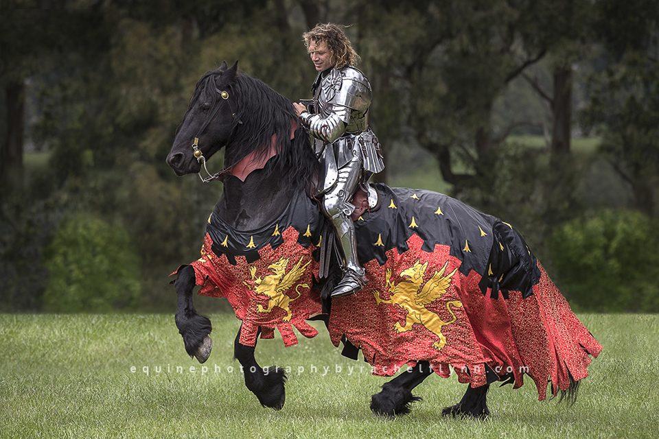 Equine-Photography-By-Rachel-Flynn-Web-6154.jpg