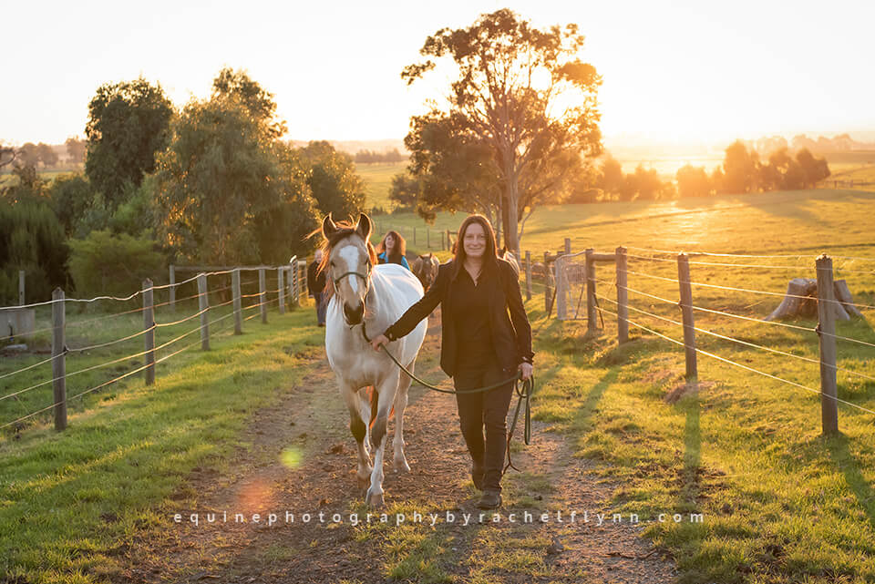 The Australian Brumby Project by Equine Photography By Rachel Flynn