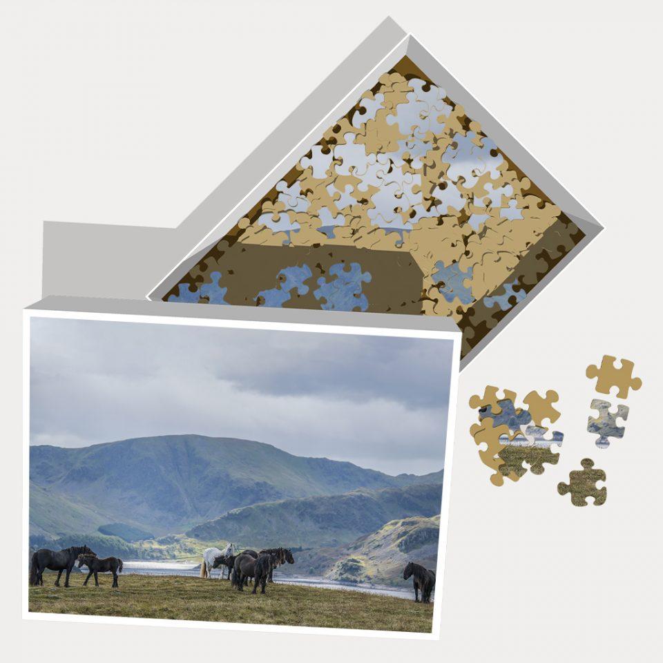 Jigsaw Puzzle Fell Mares of Cumbria U.K