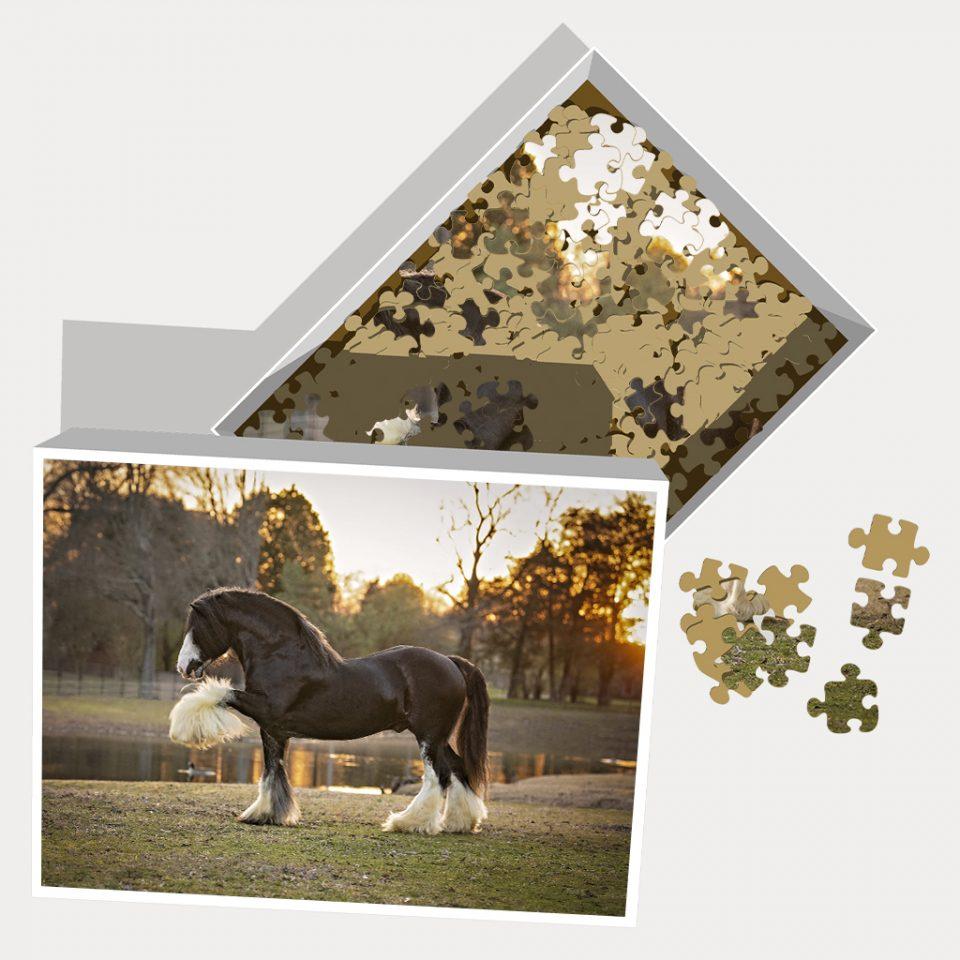 Jigsaw Puzzle Highfield Grandslam