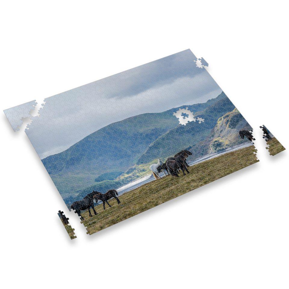 Fell Mares and Foals of Cumbria, U.K