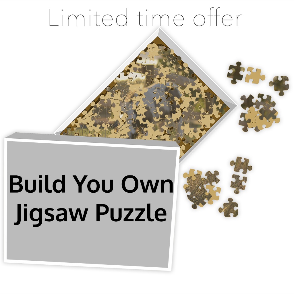 Build Your Own Jigsaw Puzzle